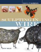 Sculpting in Wire