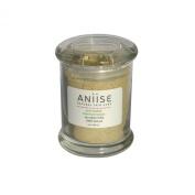 Acne Solution Botanical Masque