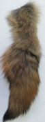 Coyote Tail